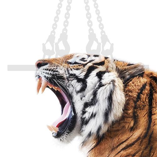 Tiger Anschlagmittel Kategoriebild