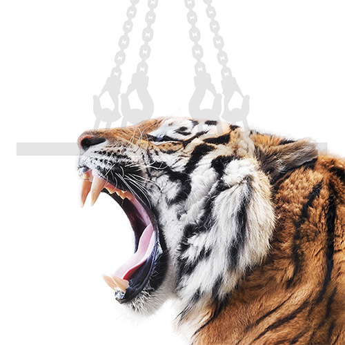 TigerHebezeuge Anschlagmittel Kategoriebild