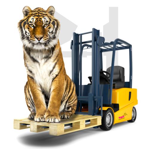 TigerHebezeuge Stapleranbaugeräte Kategoriebild