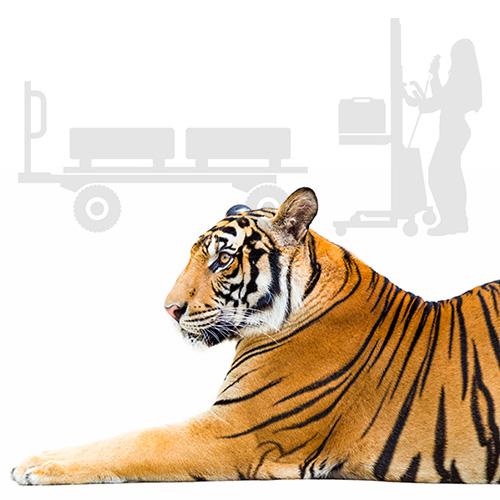 Transport- Hub- & Hebegeräte Kategoriebild